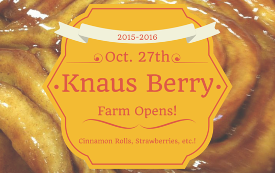 Knaus Berry Farm 2015-2016 Season!