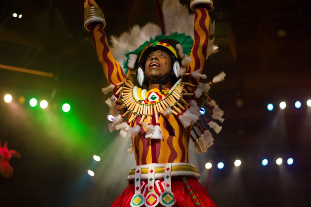 "The time to ""Protect the Pride"" is NOW! Pictured is a performer at The Festival of the Lion King in Disney's Animal Kingdom Theme park."